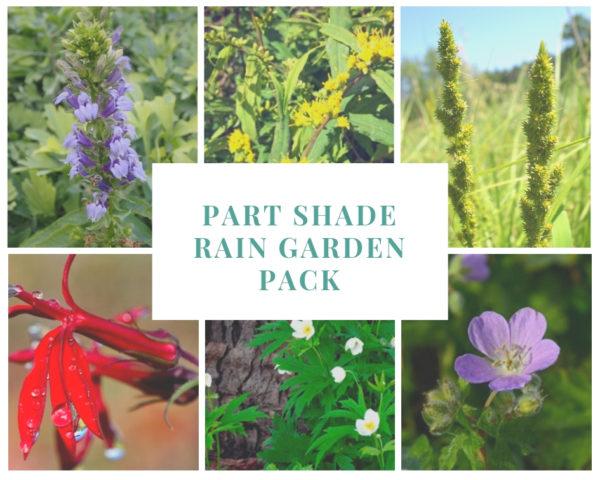 Part Shade Rain Garden Pack